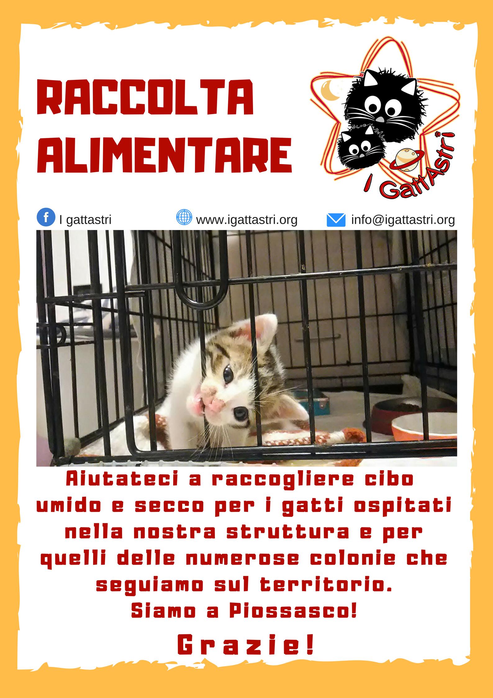 Raccolta alimentare @ Arcaplanet Rivalta (zona Esselunga) | Orbassano | Piemonte | Italia